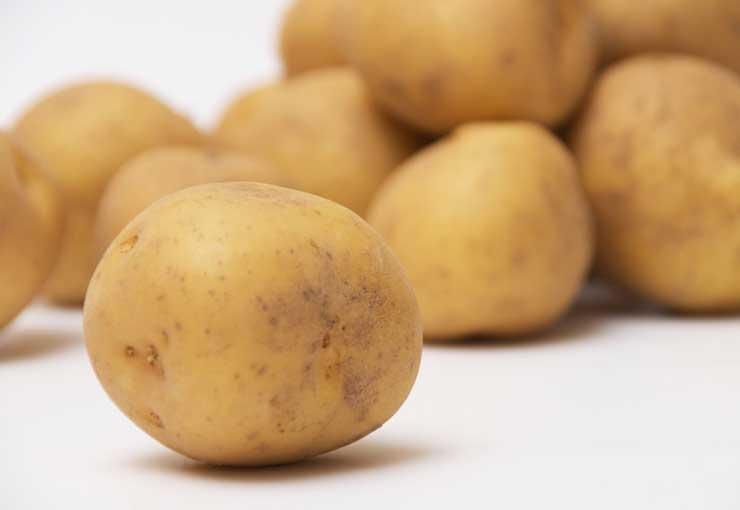 ジャガイモの選び方