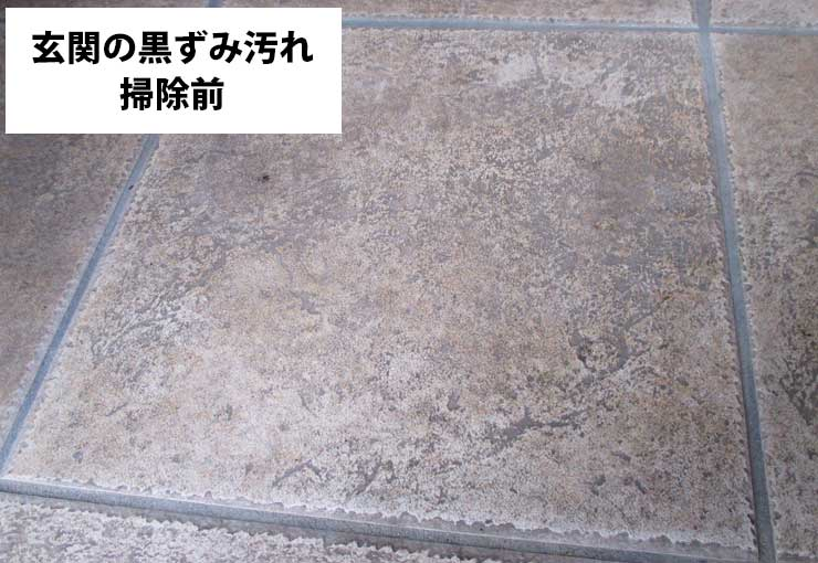 掃除前の玄関タイル