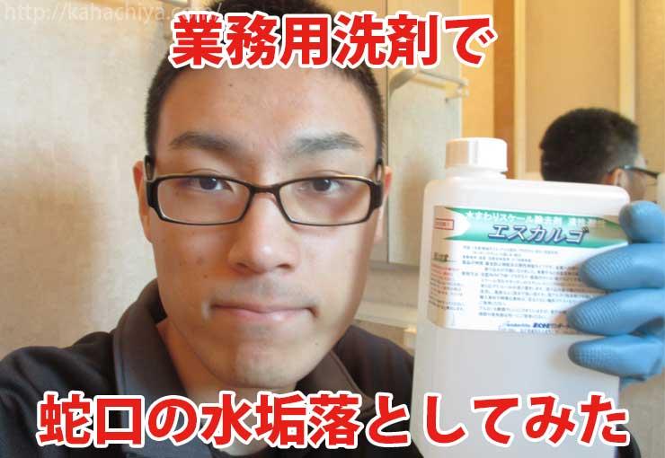 蛇口 水垢 洗剤