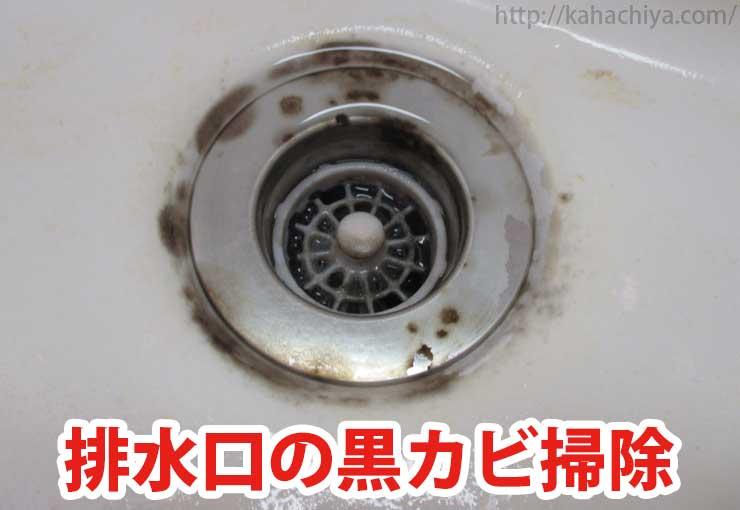 排水口の黒カビ掃除