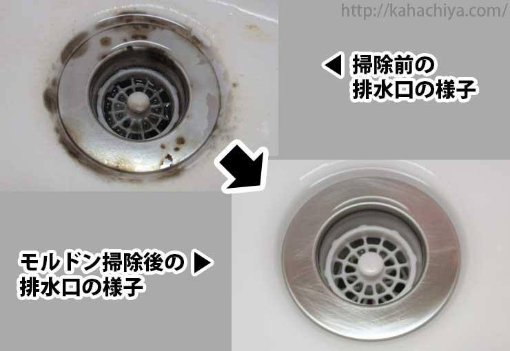 排水口の黒カビの比較